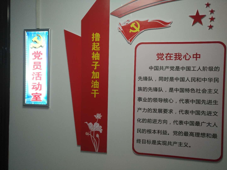 党支部建立党员活动室并建立健全各项工作制度